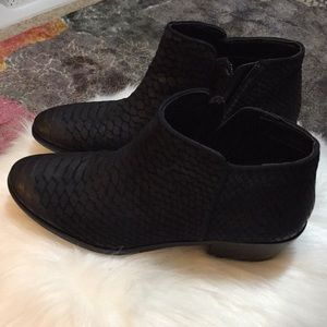 Sam Edelman Shoes - Leather ankle boots